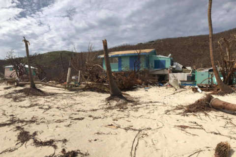 Owner of iconic Soggy Dollar Bar leads Virgin Islands relief effort