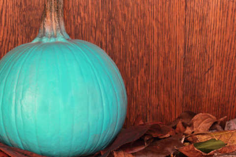 Spot the teal pumpkin: Kids with food allergies can still enjoy trick-or-treating