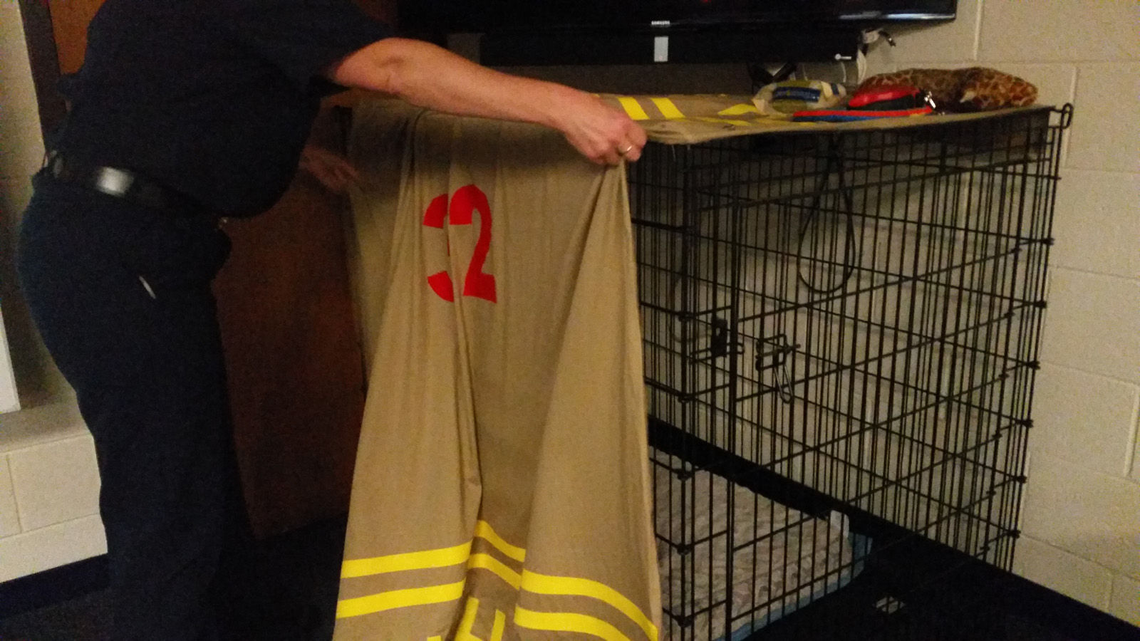 Some firefighters prefer a bed, but Wally prefers a crate. (WTOP/Kathy Stewart)