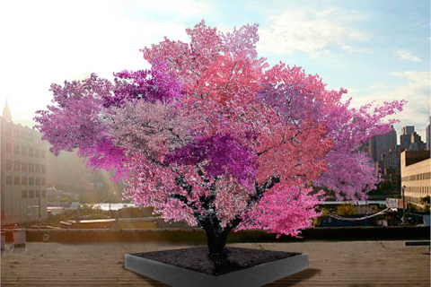 The Tree of 40 Fruit: How a hybrid art piece grafts mysticism onto agriculture