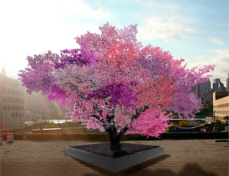 """Van Aken's """"Tree of 40 Fruit"""" is a series of hybridized fruit trees. One will be will be on display Friday through Sunday as part of the Smithsonian National Museum of American History's ACCelerate Creativity and Innovation Festival. (Courtesy Sam Van Aken)"""