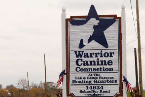Popular therapy dog program at Walter Reed contract halted over 'patient care'