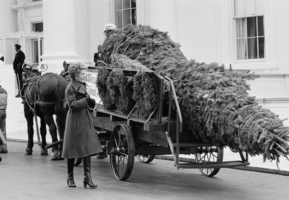 Deck The Halls White House Christmas Decorations From Fdr To Trump Photos Wtop