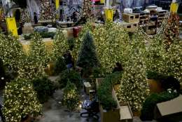 Plastic Christmas trees are strung with lights at the American Christmas warehouse in Mount Vernon, N.Y., Thursday, Nov. 9, 2017.   American Christmas is essentially a decorations attic for the nation's largest city and the surrounding area and is piled high with every imaginable holiday decoration to adorn city streets and skyscrapers.  (AP Photo/Seth Wenig)