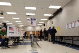 Voters seen lining up in Mason District's JEB Stuart High School. (WTOP/Hillary Howard)