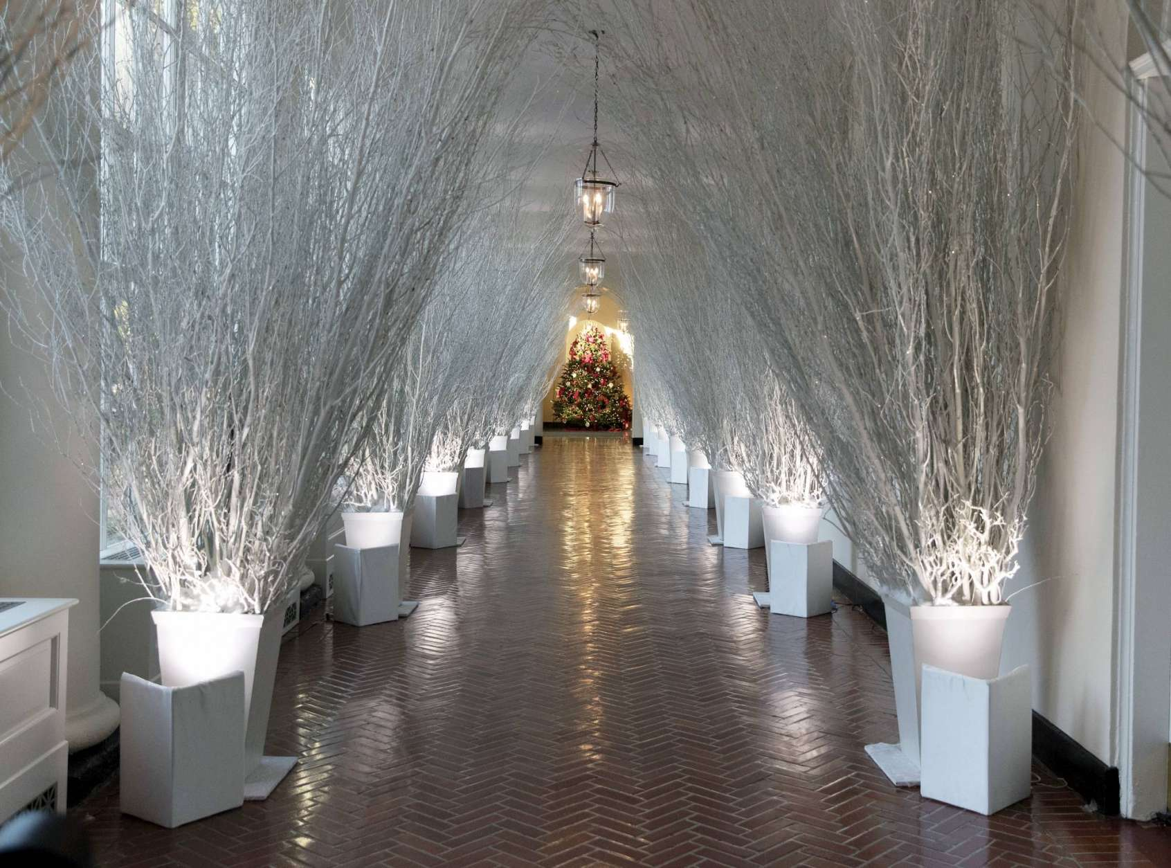 The East Colonnade is decorated with white branches that lead to a Christmas tree in the the East Garden Room during a media preview of the 2017 holiday decorations at the White House in Washington, Monday, Nov. 27, 2017. (AP Photo/Carolyn Kaster)