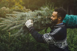 Follow these tips if you want to keep your Christmas tree alive after the holidays. (Thinkstock)