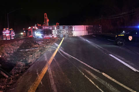 Tractor trailer crash spills frozen beef across US 50