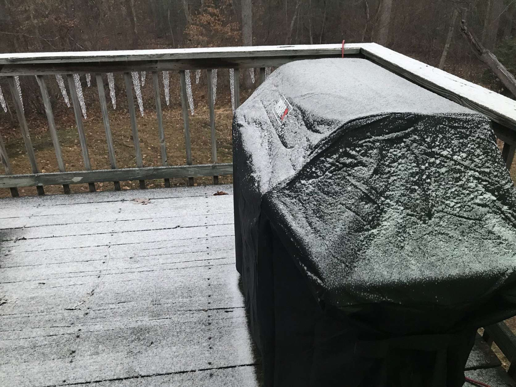 Snow falls Saturday morning in Calvert County, Maryland. (WTOP/Michelle Basch)