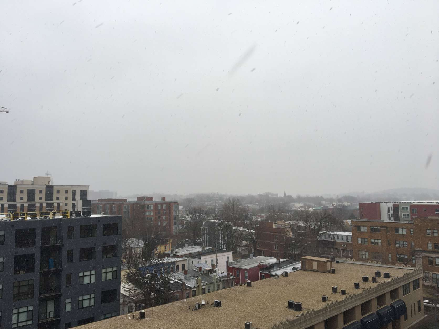 View of the snowfall from northeast D.C. (WTOP/Sarah Beth Hensley)