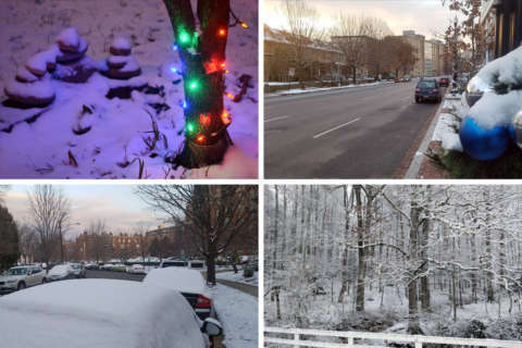 Brief winter wonderland: Record snow totals and what to expect next