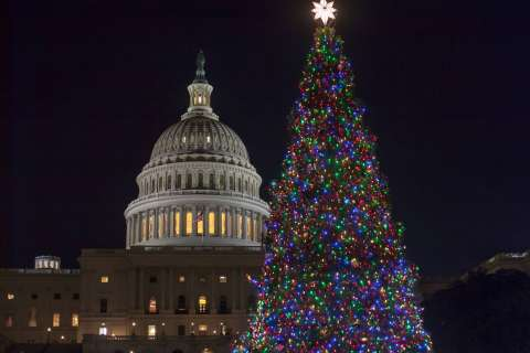 WATCH: Capitol Christmas tree delivered