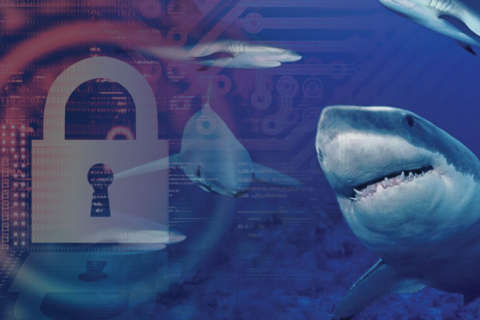 Navigating the Cyber Sea of Compliance