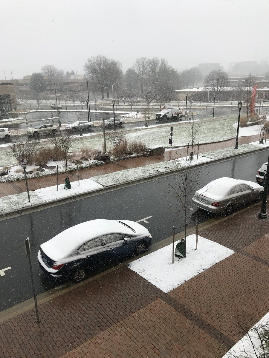 Twitter user @Chisel_77 tweeted a photo of the snow sticking to the grass and cars in Rockville, Maryland. (Courtesy Twitter/@Chisel_77)
