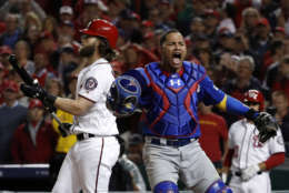 Chicago Cubs catcher Willson Contreras (40) reacts after Washington Nationals' Bryce Harper struck out for the final out as the Cubs beat the Washington Nationals 9-8 to to win baseball's National League Division Series, at Nationals Park, early Friday, Oct. 13, 2017, in Washington. (AP Photo/Pablo Martinez Monsivais)