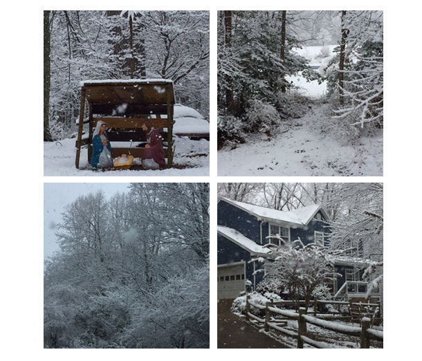 A listener sent us four photos from Amissville, Virginia. (Courtesy Patty)