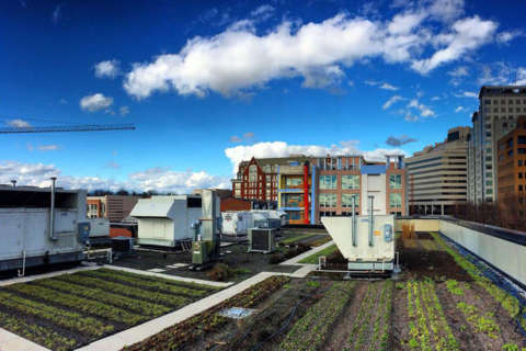 North Bethesda's Pike & Rose getting big rooftop farm for tenants