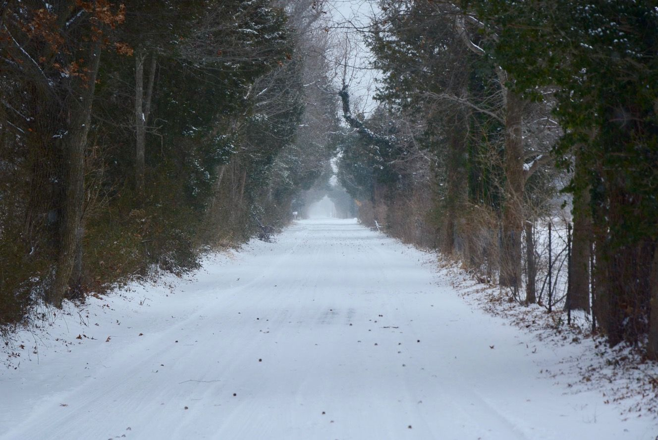Whitehall Road near US-50 in Anne Arundel County is picturesque with its light covering of snow. (WTOP/Dave Dildine)