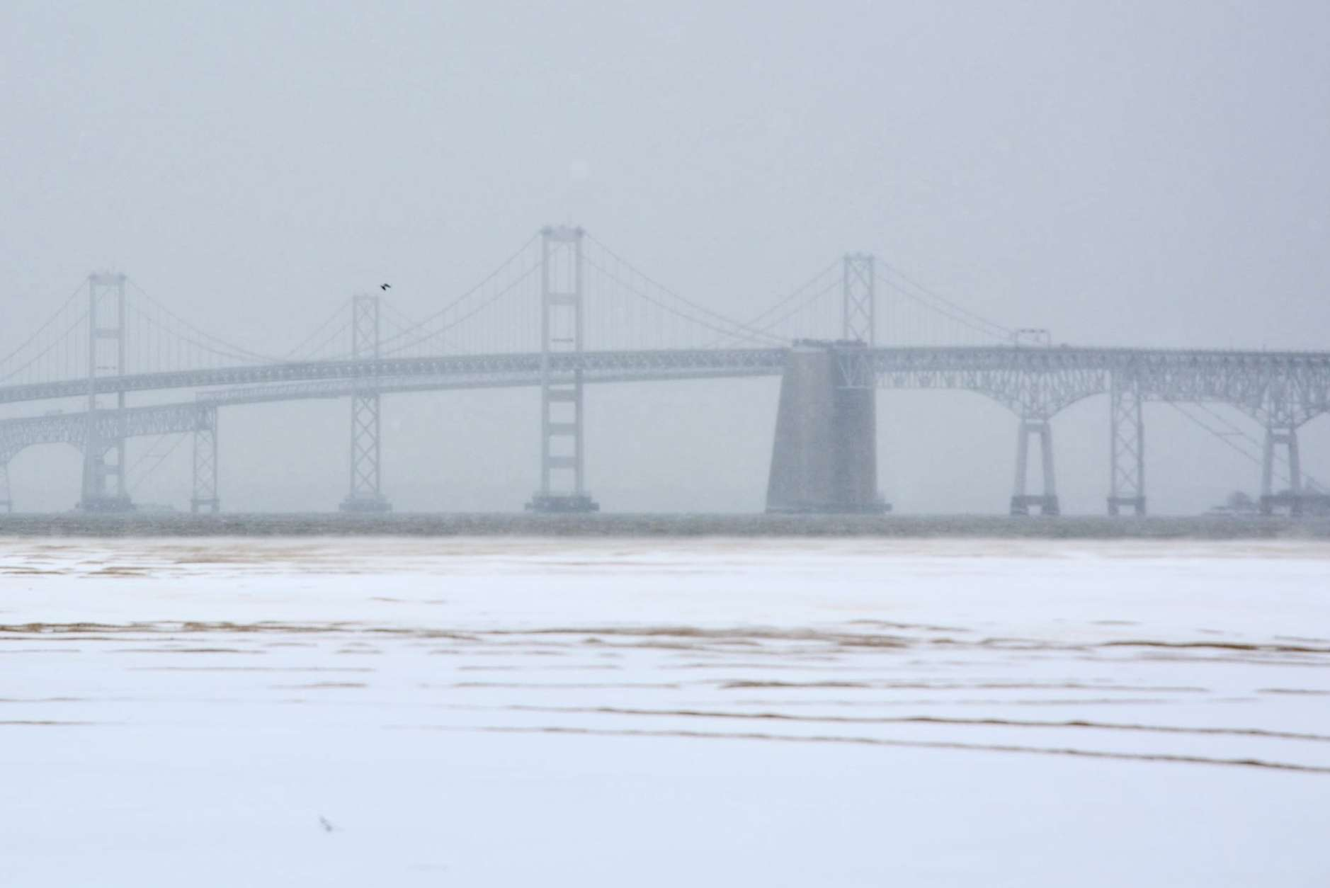 The Bay Bridge is obscured by blowing snow Thursday morning. (WTOP/Dave Dildine)