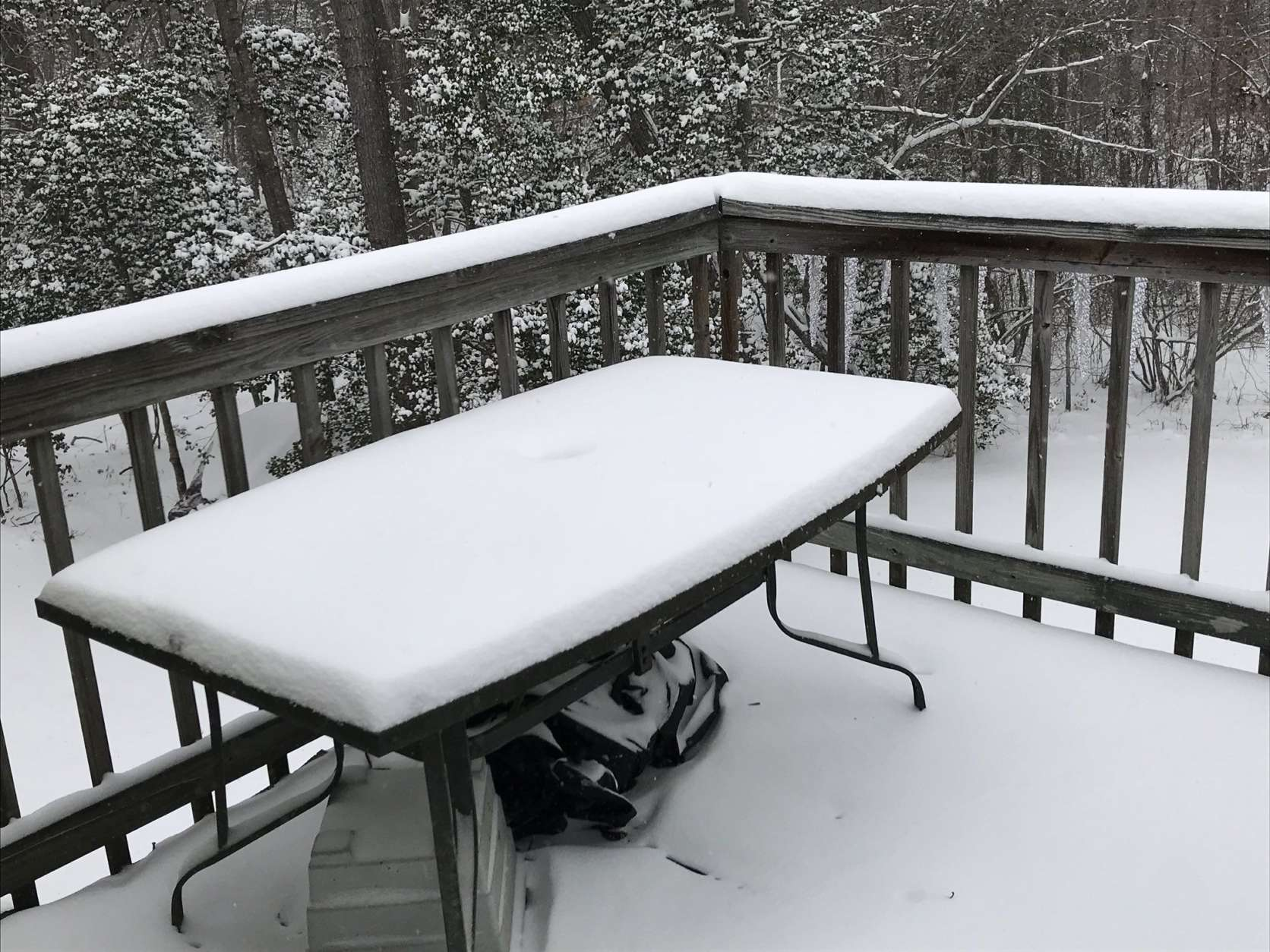 Prince Frederick in Calvert County, Maryland, saw around three inches. (WTOP/Michelle Basch)