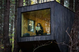 Jon Staff and Pete Davis, both Harvard graduates, established a refuge for stressed-out city dwellers with a collection of tiny houses on a plot of land in the woods. (Getaway/Vanessa Faria)