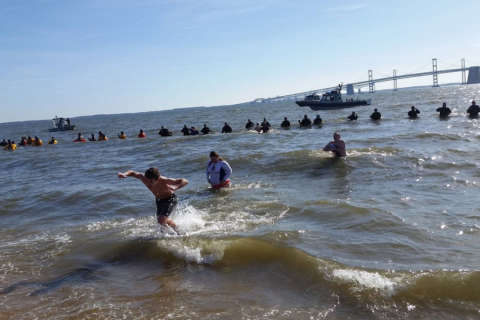 Freezing for a reason: Polar bear plungers take a dip in Chesapeake Bay