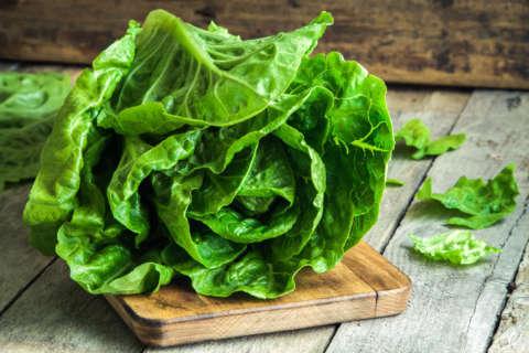It's OK to eat romaine lettuce again