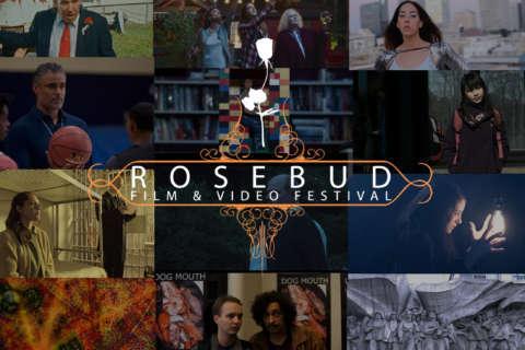 Budding filmmakers blossom at the Rosebud Film Festival