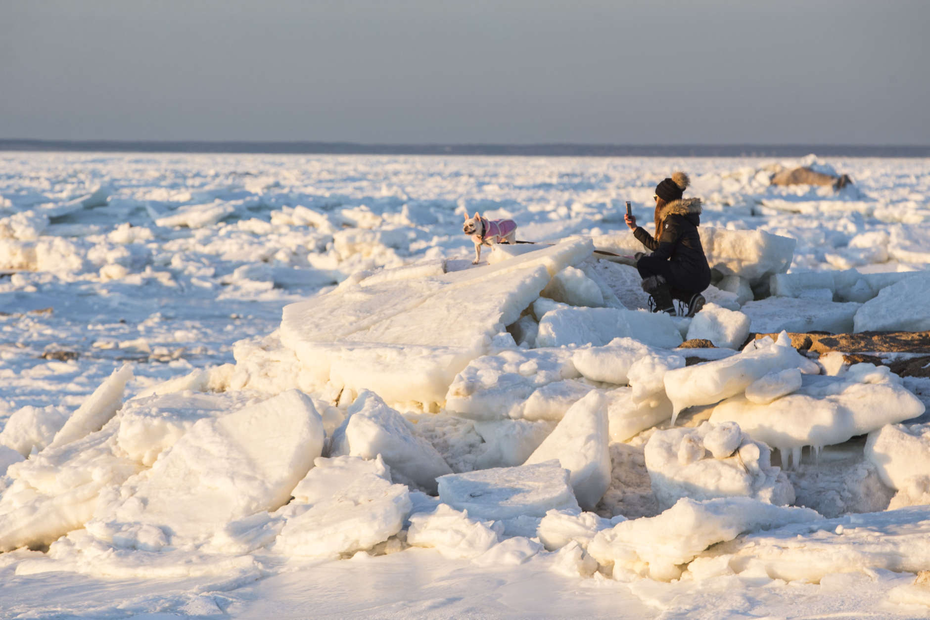 ORLEANS, MA - JANUARY 03: A woman photographs her English Bull Dog on a jetty next to an ice covered Cape Cod Bay near Rock Harbor on January 3, 2018 in Orleans, Massachusetts. A winter storm is hitting the east coast from Florida to New England bringing snow and frigid temperatures. (Photo by Scott Eisen/Getty Images)