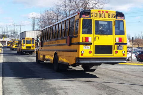 Bus driver dead after being struck by Prince William County school bus