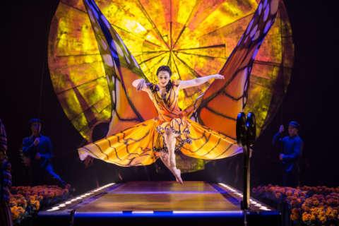 Exclusive sneak peek! The magic of Cirque du Soleil: Luzia