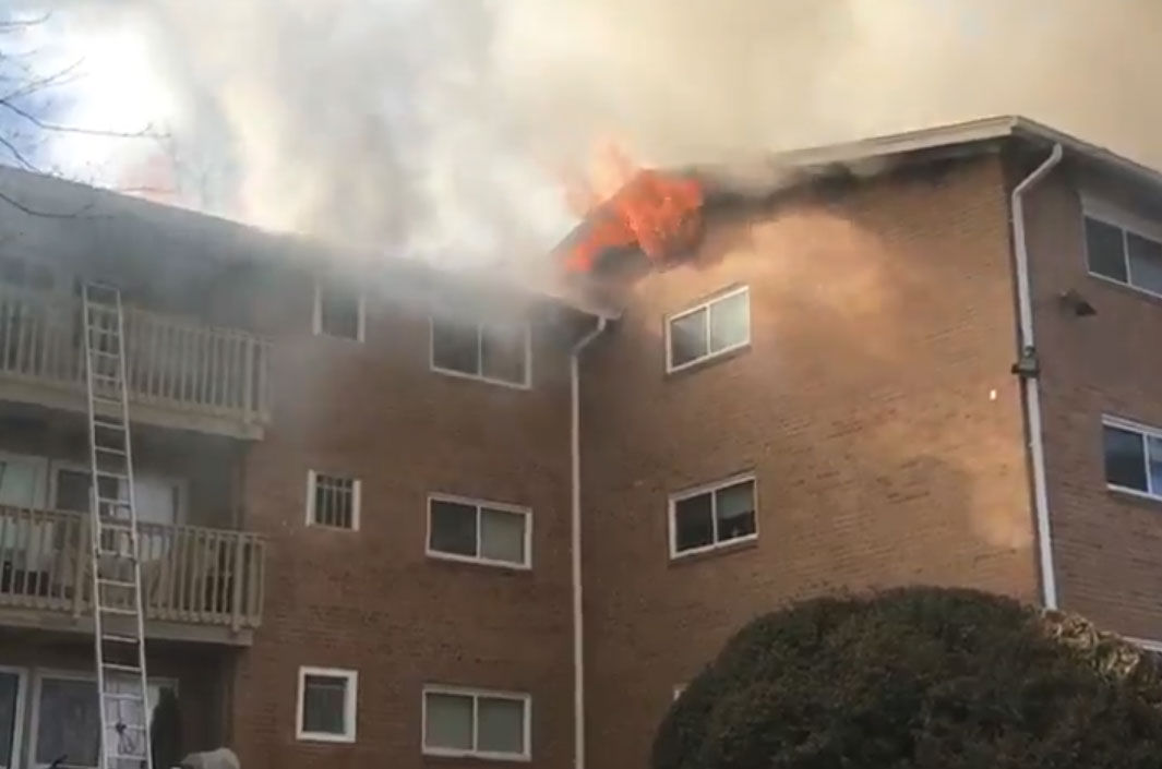 Fire tore through a building in the Fireside Park apartments, in Rockville, Maryland, Friday afternoon. (Courtesy Montgomery County Fire and Rescue)