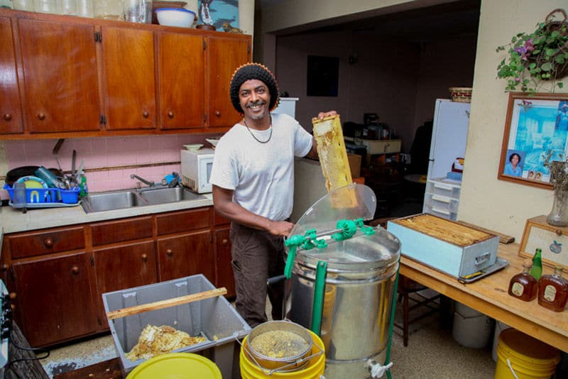 Before Hurricane Irma struck, Wayne Clendinen works at his roadside business to prepare honey to sell. Clendinen is one of the bee keepers being assisted by the Save The Bees Inc. campaign. (Courtesy Eliza Margas)