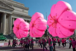 Enjoy giant balloons, floats and entertainment during the annual National Cherry Blossom Festival Parade on Saturday,  April 14. (Courtesy National Cherry Blossom Festival)