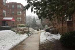 Snow falls Feb. 17 in Silver Spring. (WTOP/Patrick Roth)