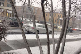 Snow falls on Idaho Ave. NW. (WTOP/Chantalle Edmunds)