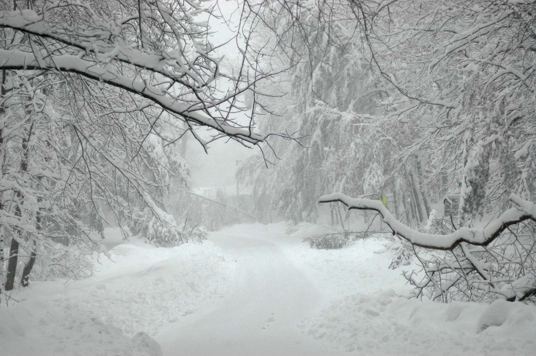 The heavy, wet snow that fell during the Snowmageddon storm in February 2010 downed numerous trees in Fairfax County, prolonging plowing efforts.  (WTOP/Dave Dildine)
