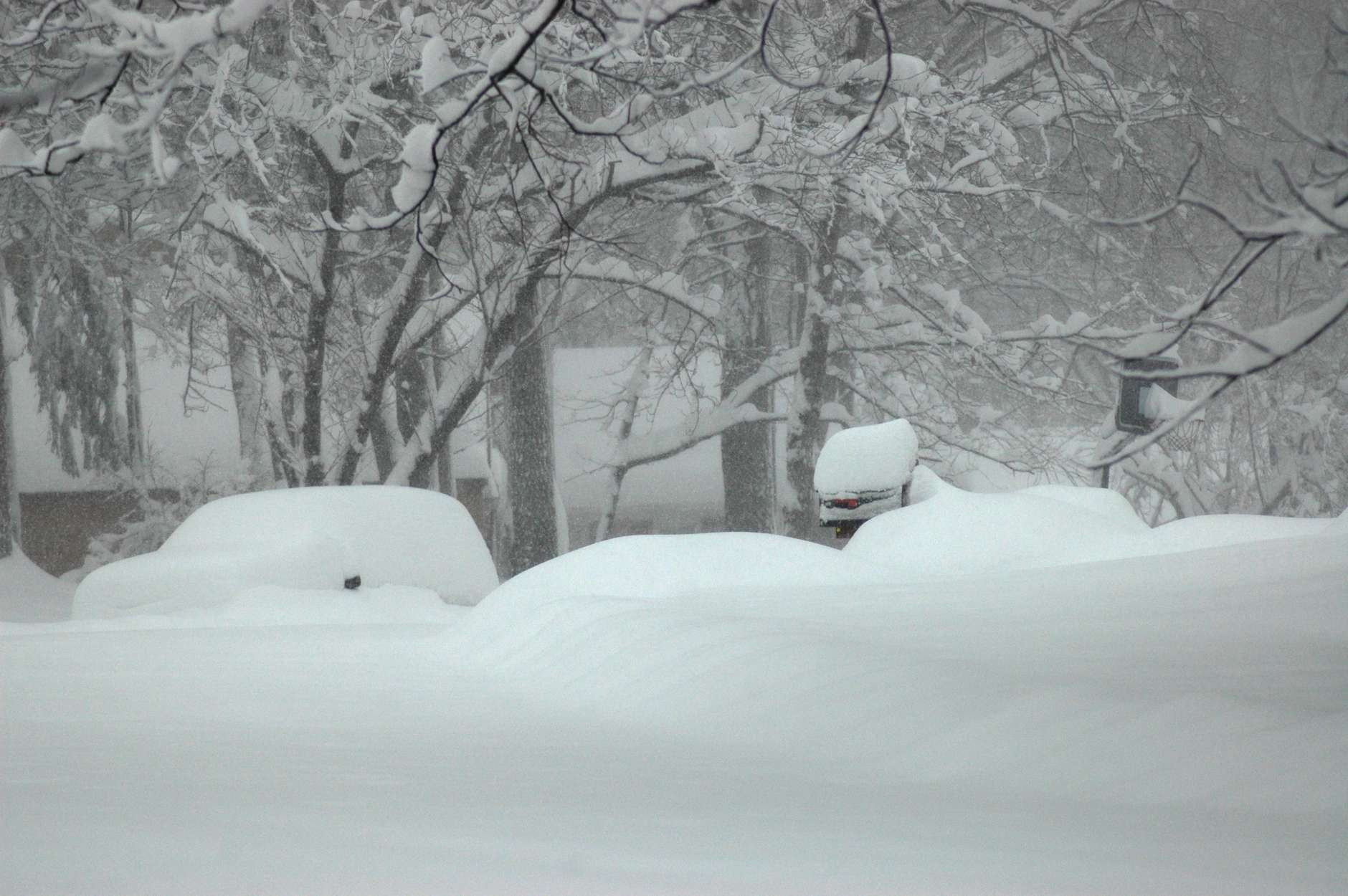A cult-de-sac in northern Fairfax County is buried under more than two feet of snow during the big February 2010 storm. (WTOP/Dave Dildine)