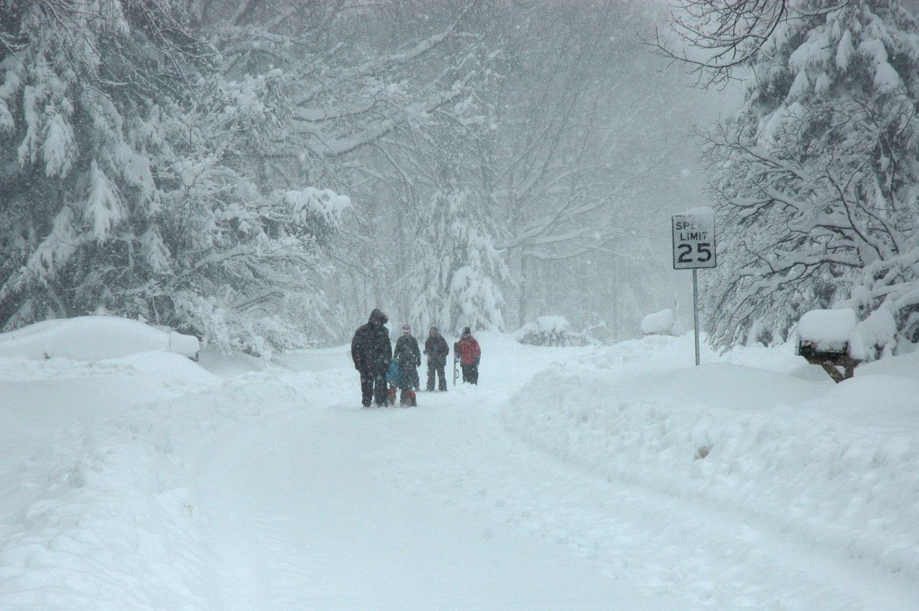A family walks down a snow-covered street during the February 2010 storm. (WTOP/Dave Dildine)
