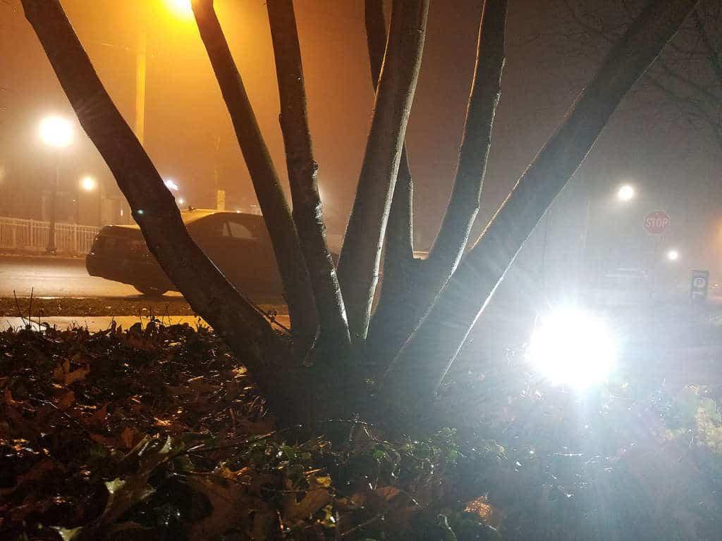 low angle photo of fog