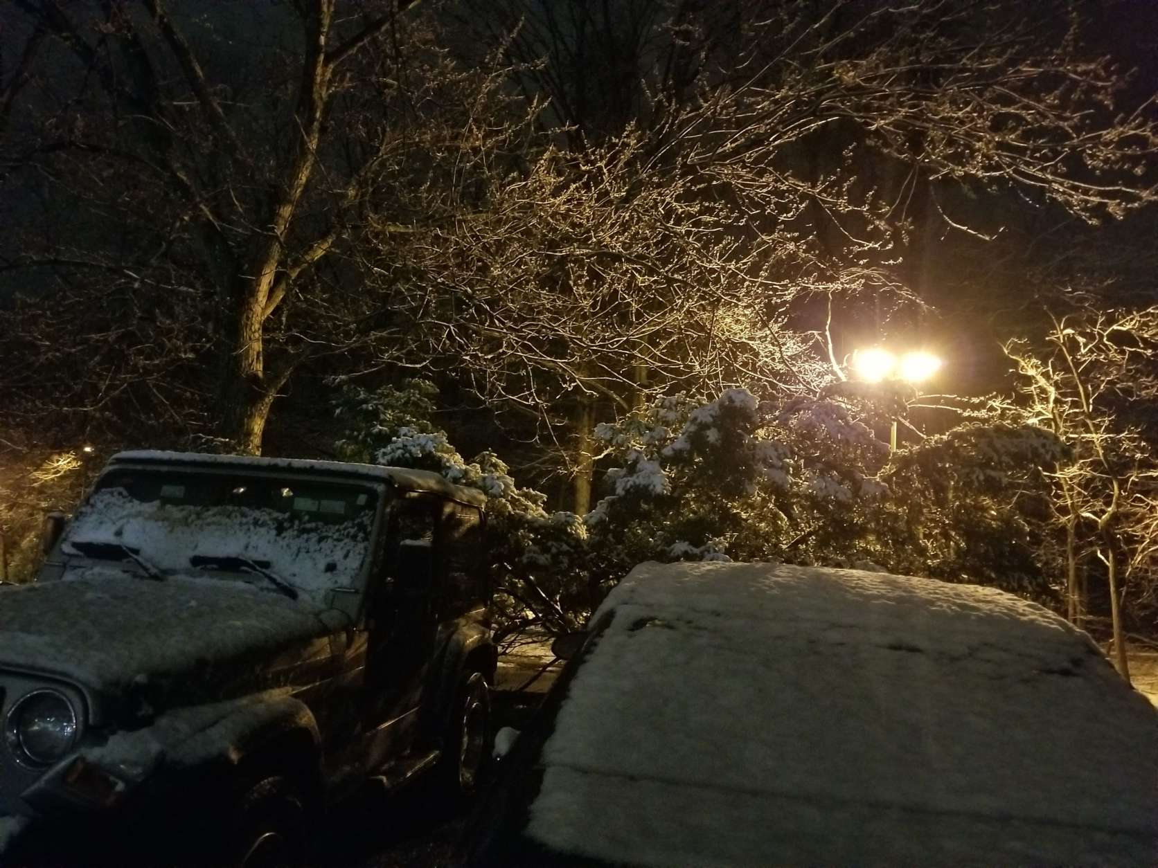 Snow covers cars in College Park, Maryland. (Courtesy Nomie)