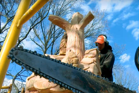 WATCH: Chainsaw artist at work at Oakgrove Park (Video)