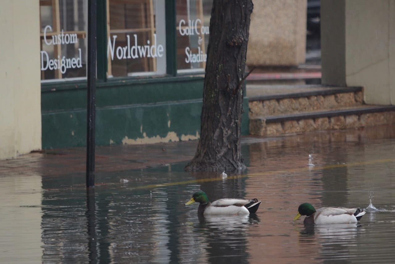 Nor'easter brings flooding to Annapolis | WTOP
