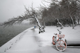 Snow falls on a lone bicycle and cherry blossom trees at the tidal basin, Wednesday, March 21, 2018, in Washington during a snow storm on the second day of spring. (AP Photo/Jacquelyn Martin)
