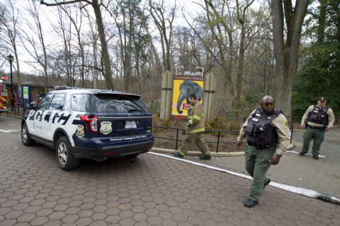 National Zoo expands security for spring break