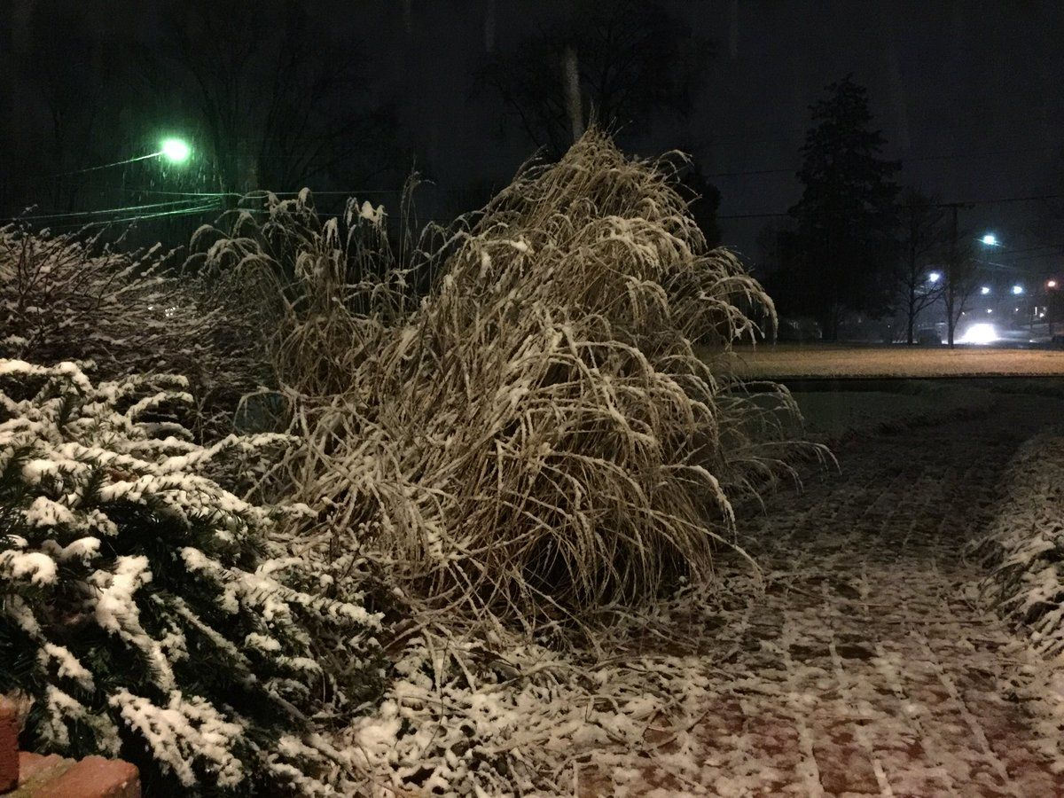 WTOP's Kristi King captured a picture of the snow in Alexandria on Tuesday night. (WTOP/Kristi King)