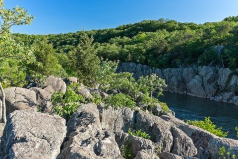 Hiker rescued after falling on Billy Goat Trail in Great Falls Park