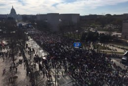 Crowds gather for the March for Our Lives in D.C. (Courtesy of Indivisble Brooklyn on Twitter)
