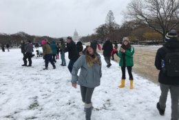 """Toby or Not Toby - A Snowball Battle"" takes place on the National Mall on Wednesday, March 21, 2018. The gathering was organized through Facebook and was named after the winter storm. (WTOP/Dick Uliano)"