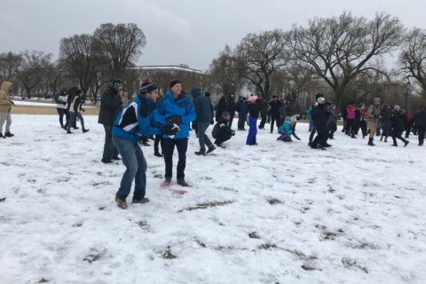 Revelers gather for a spring day snowball fight at the National Mall